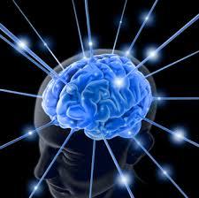 Mente & Cérebro . Como Desenvolver Suas Potencialidades?